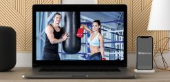 Download Udemy - Boxing Mastery: Learn from a Trainer of Champions at https://beeaca.com