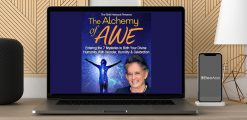 Download Andrew Harvey - The Alchemy of Awe at https://beeaca.com