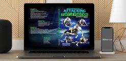 Download Gordon Ryan - Systematically Attacking the Turtle Position at https://beeaca.com