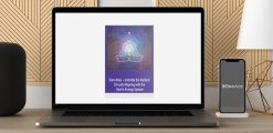 Download Sara Allen - Unbridle the Radiant Circuits - Aligning with the Soul's Energy System at https://beeaca.com