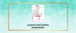 Download [Audio Only] BT06 Workshop 51 - Treating Troubled Adolescents - Peggy Papp