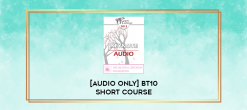 Download [Audio Only] BT10 Short Course 44 - A Multi-Layered Developmental Approach to Couples' Counseling: Using the Brain's Neuroplasticity to Achieve Permanent Results - Roberta Karant