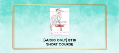 Download [Audio Only] BT18 Short Course 32 - Effective Management of Chronic Anxiety and Depression with Essential Neurobiological Communication - Bart Walsh