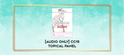 Download [Audio Only] CC15 Topical Panel 02 - Deepening Attachment and Connection - Harville Hendrix