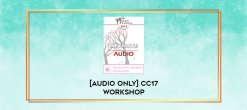Download [Audio Only] CC17 Workshop 15 - Healing the Fragmented Self in Couples Treatment - Janina Fisher