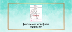 Download [Audio and Video] BT18 Workshop 18 - How to Deeply Open to a Client's Experience with Safety and Skill - Stephen Gilligan