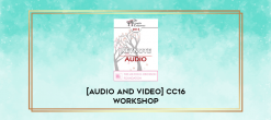 Download [Audio and Video] CC16 Workshop 11 - Healing Affairs with Emotionally Focused Therapy - Scott Woolley