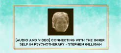 Download [Audio and Video] Connecting with the Inner Self in Psychotherapy - Stephen Gilligan at https://beeaca.com