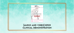 Download [Audio and Video] EP09 Clinical Demonstration 15 – Active Centering: Applying Somatic Coaching in Psychology - Robert Dilts at https://beeaca.com