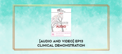 Download [Audio and Video] EP13 Clinical Demonstration 15 - Treatment of a Suicidal Patient with a History of Victimization: A Constructive Narrative Perspective - Donald Meichenbaum