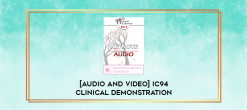 """Download [Audio and Video] IC94 Clinical Demonstration 18 - """"PANIC CHAIR"""" TREATMENT FOR PHOBIAS - Sidney Rosen"""